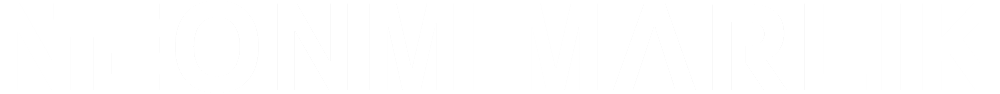 logo-huge-white.png